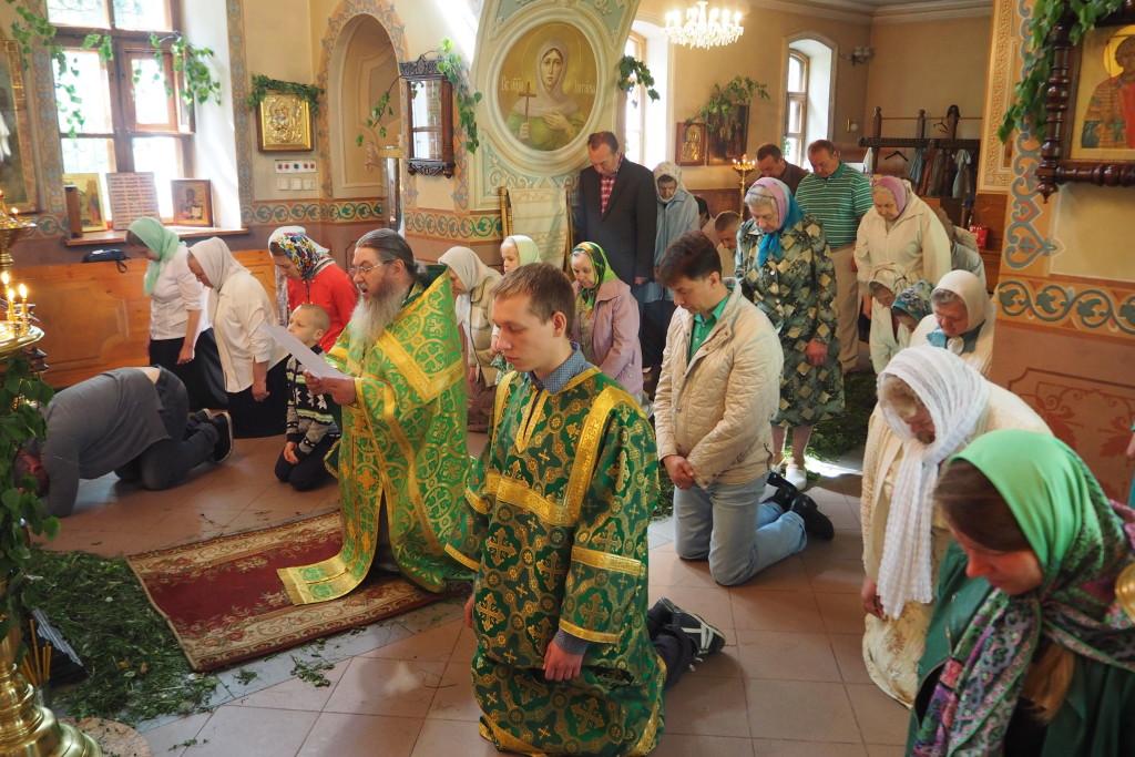 Последние новости о белгородской области